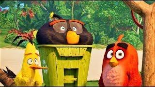 Мультик 2019 - Angry Birds в кино 2 / Трейлер (ENG)