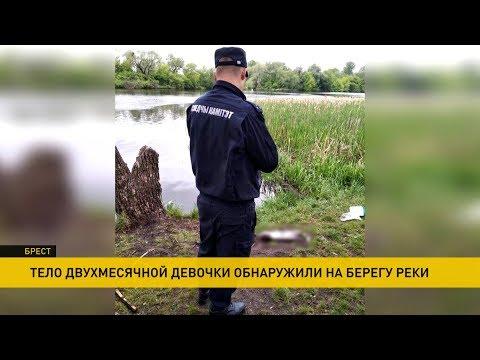 В Бресте на берегу реки нашли тело новорожденной девочки