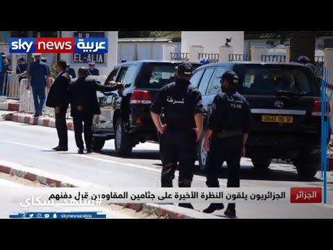 تشييع جثامين مقاومين جزائريين بعد استعادة رفاتهم من فرنسا  - نشر قبل 3 ساعة