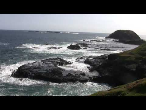 Australia - Daytrip from Melbourne to Phillip Island