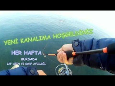 Antalya'da At-Çek Yöntemi İle Zargana Tral ve Yazılı Orkinos Avı