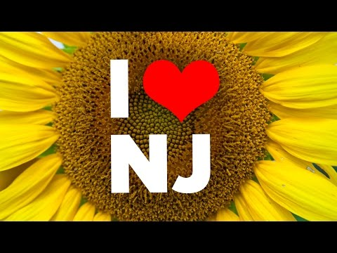 10 Reasons To Never Visit New Jersey