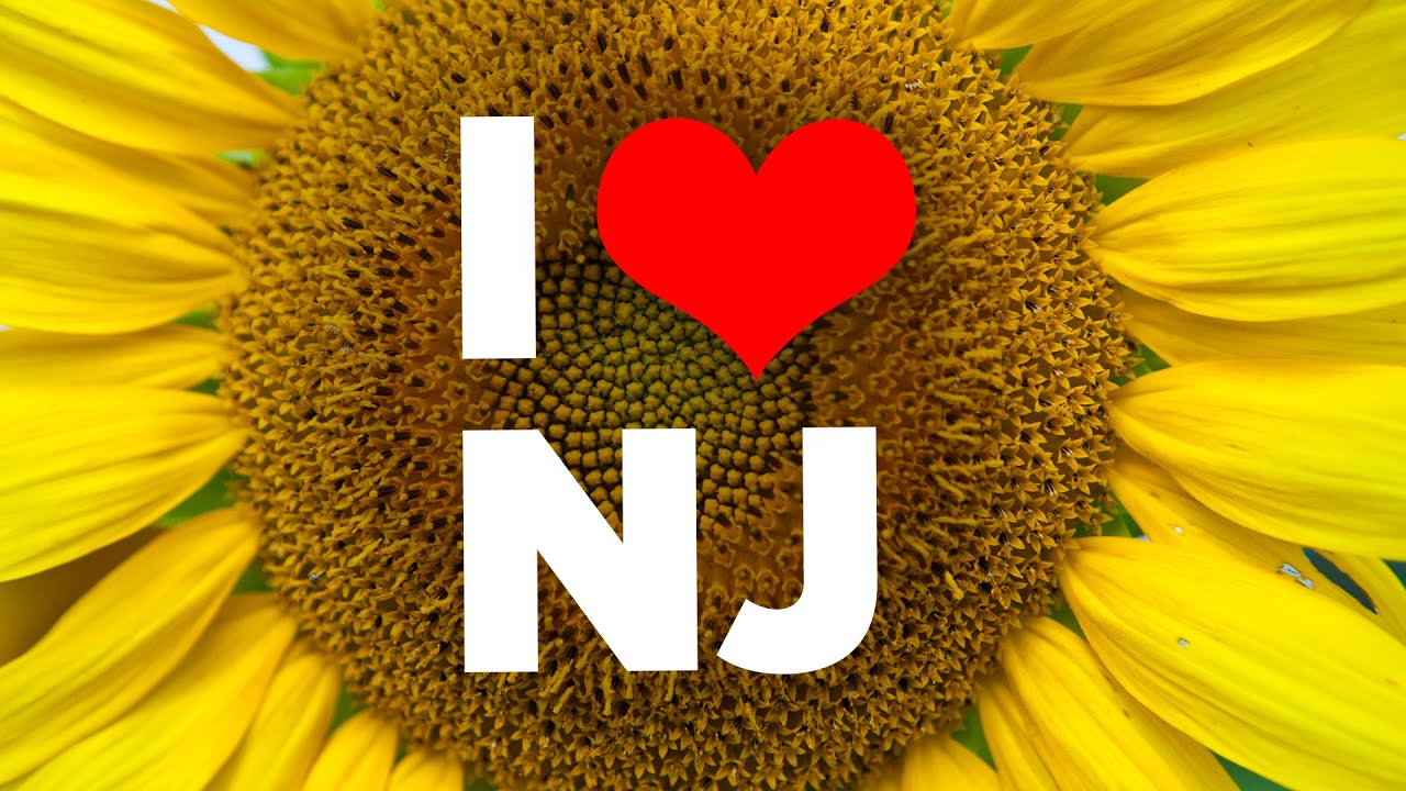 10 reasons to never visit new jersey - youtube