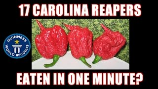 World's Hottest Challenge: 17 Carolina Reapers In 1 Minute? *no Puke*  | Freakeating Vs World 100