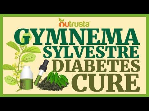 Diabetes Cure? Gymnema Sylvestre Benefits for Blood Glucose