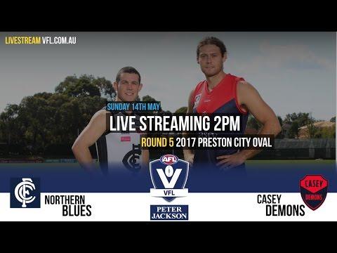 Rd 5 Peter Jackson VFL : Northern Blues v Casey Demons