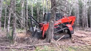 G E M = Green Environmental Mulchers Dead wood