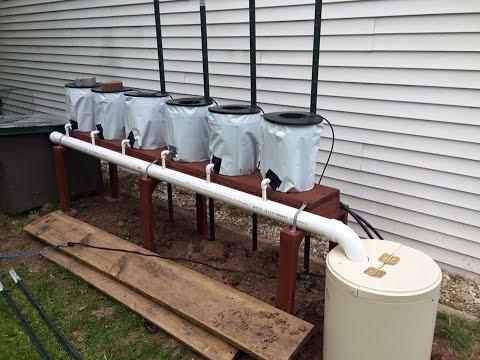 Cheap Diy Bato Dutch Bucket Hydroponic System Doovi