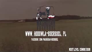 WASHUSAR - POLSKA HODOWLA PSÓW RASY BOERBOEL