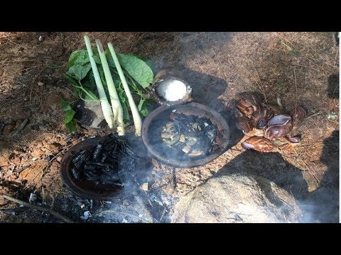Primitive Survival Skills: Primitive Technology Looking For Food (Snail)