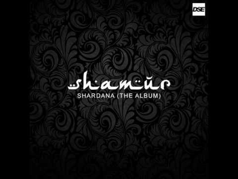 Shamur Let The Music Play DJ Lee Remix DSE