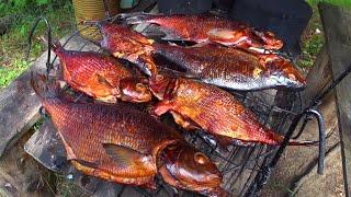 Живëм в лесной избе Рыбалка Быт в лесу Лещ горячего копчения Не нужен нам берег Турецкий Часть2