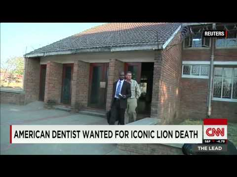Lion hunter dentist could face the law
