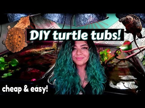 HOW I SET UP MY TURTLE TUBS! + UPDATE ON MY 5 RARE EXPENSIVE TURTLES