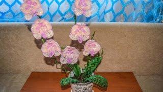 Персиковая орхидея из бисера. Мастер класс. Первая часть.