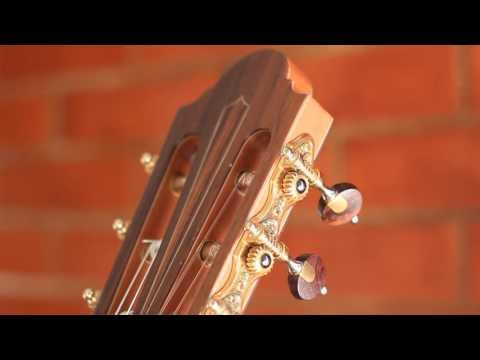 Polegario violão top 79