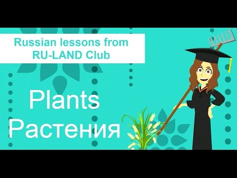 Plants in Russian. Растения. How to learn Russian vocabulary