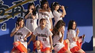 グッドオールドデー2015 チアドラゴンズ D-STAGE ナゴヤドーム 絶対直球...