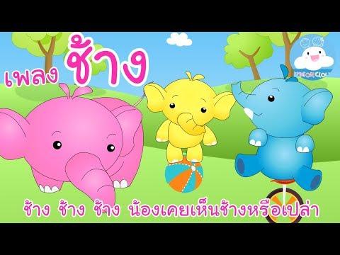 เพลงช้าง ช้างๆๆ น้องเคยเห็นช้างหรือเปล่า | เพลงเด็ก by KidsOnCloud