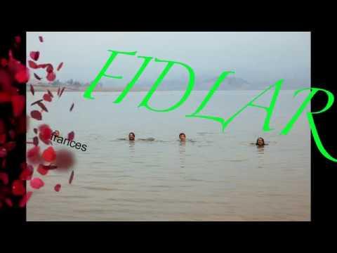 FIDLAR - frances farmer will have her revenge on seattle (NIRVANA(