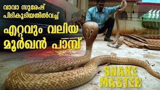 Wow ! Vava Suresh rescues Largest Cobra ever | Snakemaster |  Latest episode