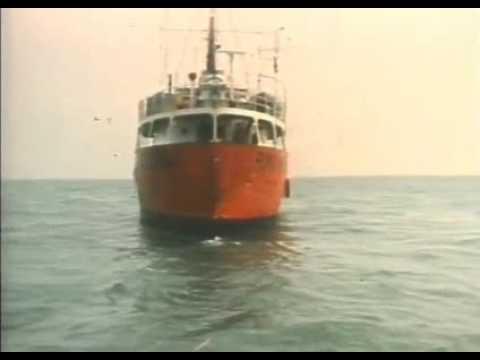 Offshore Radio Caroline, Veronica, Northsea