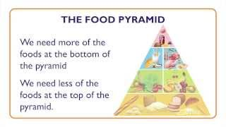 Fish: Nutritional Value and Food Pyramid - Something Fishy: Kids Lesson 7