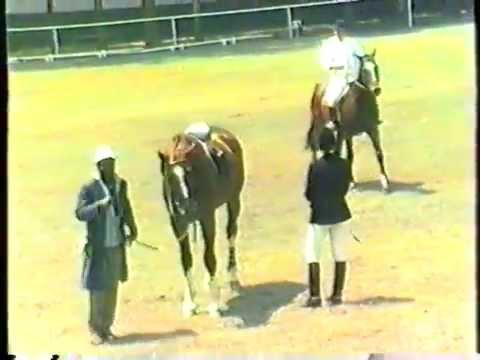 1986 Zambia   Kitwe, Derby, CHL, part 8, Derby C Jumpoff, Grant Devant Éric, Derby Open