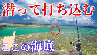魚の聖域に潜って餌を直接打ち込む!【宮古vs石垣釣り対決#8】