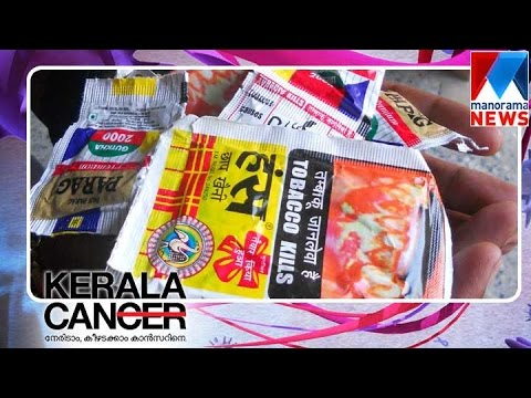 Chewing Pan Masala Causes Oral Cancer Manorama News