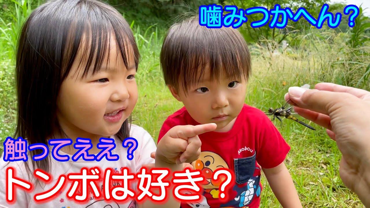 一時保育での2人の話を少し!トンボは触れるかな?男女双子生後2歳6ヶ月Mix twins does the dragonfly touch it?【何気ない日常118】