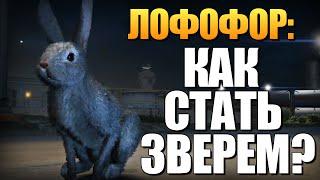 GTA 5 - Как Играть за Животных? (Лофофоры) #9