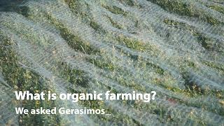 WHAT IS ORGANIC FARMING? We asked Gerasimos...