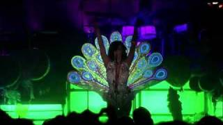 Peacock live at Letterman 2010 (KATY PERRY)