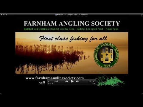 Fishing Guide to Farnham Angling Societies' Badshot Lea Complex
