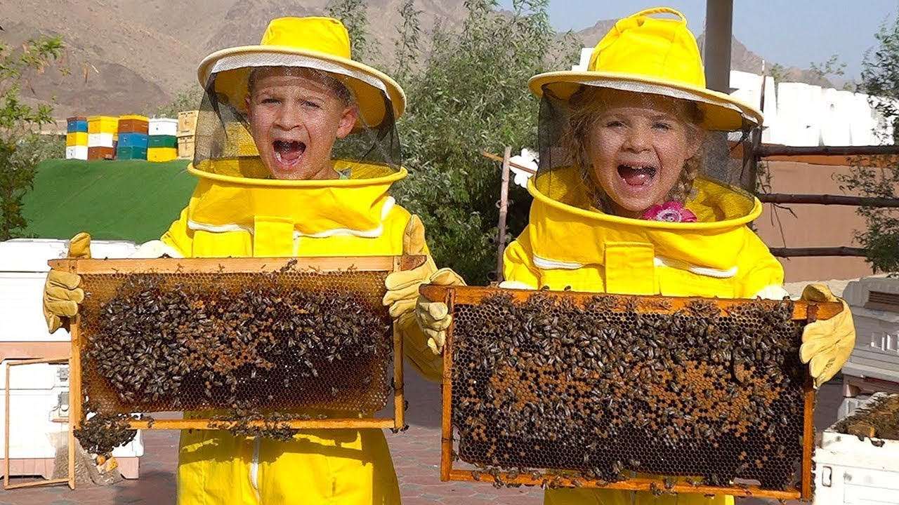 Diana y Roma Aprenden sobre las Abejas, HATTA Honey Bee Garden – Divertido Viaje Familiar