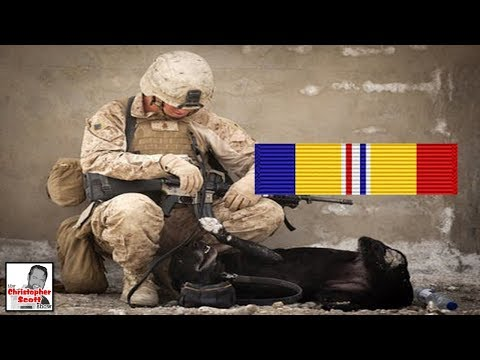 What Does The Combat Action Ribbon Represent?