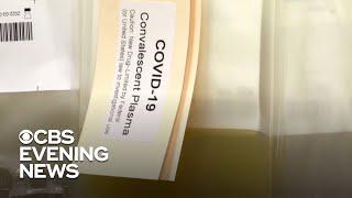 Convalescent plasma therapy showing promise as coronavirus treatment