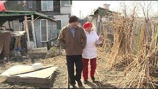 50 лет вместе. супруги кужим готовятся к золотой свадьбе