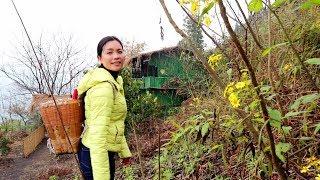 【南方小蓉】20歲的年輕姑娘身強力壯,長年隱居深山 過著不問世間事的神仙生活