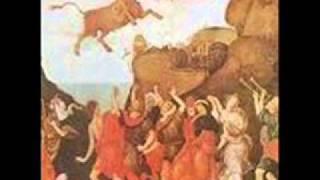 Bull Angus - Savoy Truffle