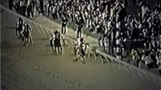 SECRETARIAT - 1973 Preakness Stakes (Alternate Footage)
