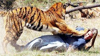 kumpulan video DETIK DETIK Serangan brutal hewan buas Bagian 1