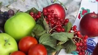 Парило звичайне, злинка канадська, яблука, бузина. Серпень 2013