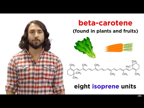 Lipids Part 1: TAGs, Fatty Acids, and Terpenes