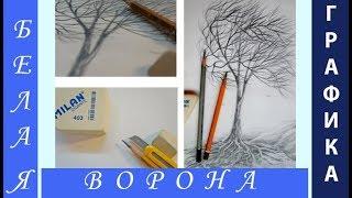 Как нарисовать дерево и ветер карандашом поэтапно. Урок 9.(Нарисовать дерево карандашом не так сложно, как кажется. Даже новичок способен поэтапно нарисовать дерево,..., 2017-01-29T15:37:08.000Z)