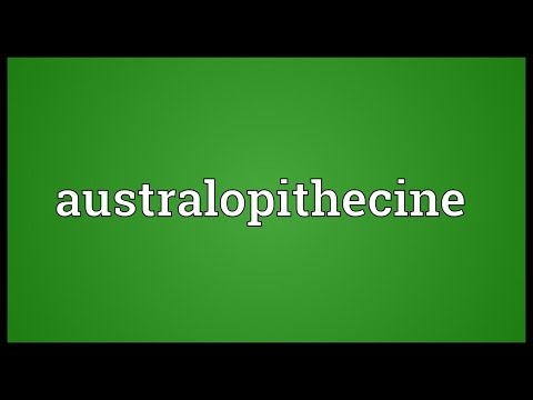 Australopithecine Meaning
