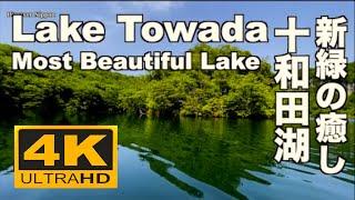4K 十和田湖の新緑 Fresh green Lake Towada 十和田観光 カヌー Canoe Relaxing 青森観光  Canoe trip 森 リラックス 癒し 湖畔 睡眠 眠くなる音楽
