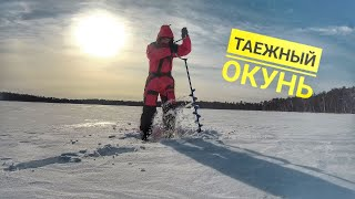 Рыбалка за 500 км от Омска на таёжном озере