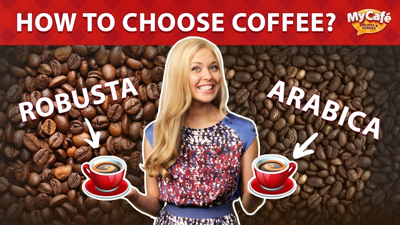 How To Choose Coffee Arabica Or Robusta Tips From My Cafe And Js Green Bean Kopi Diet Java Barista Training Center